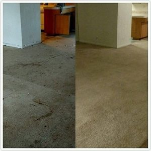 Before After Apartment Clean Up Kokomo IN