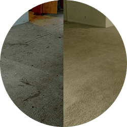 before after carpet cleaning commercial service