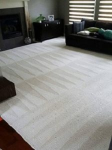 carpet cleaning residential commercial schedule